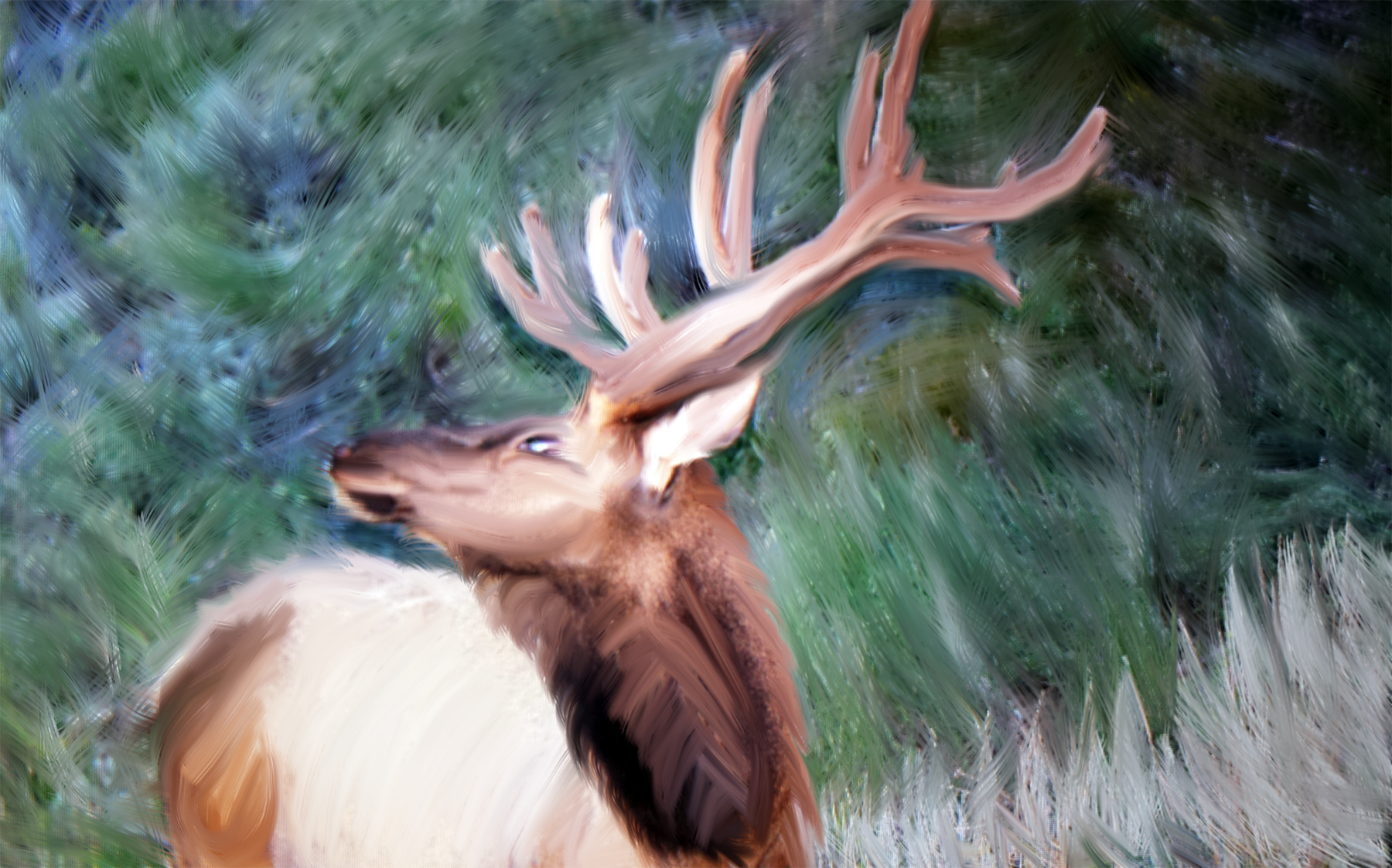 picture to watercolor deer